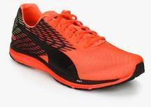 168db7de22f Puma Speed 100 R Ignite 2 Orange Running Shoes for Men online in ...