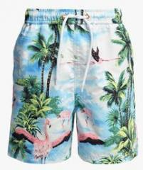 644477f718 Next Blue Flamingo Print Swim Shorts for boys price in India 2019 ...