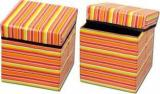 Fabriclair Foldable Eye Catching Pattern Storage Living & Bedroom Stool