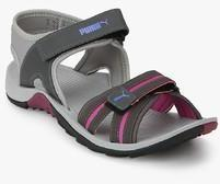 Puma Comfy Dp Dark Grey Floaters for girls in India - Buy at Lowest price  March da7ee2fc2