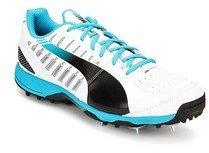 011d479862e8de Puma Evospeed Cricket Spike 1.3 White Cricket for Men online in ...
