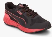Puma Future Runner Ii Dp Peris Dark Grey Running Shoes for women ... 7356a4f30379