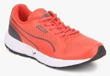 Puma Future Runner Wn S Dp Red Running Shoes for women - Get stylish shoes  for Every Women Online in India 2019  dae26db68212