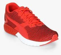 ba756a50b79 Puma Ignite Dual New Core Red Running Shoes for Men online in India at Best  price on 26th March 2019