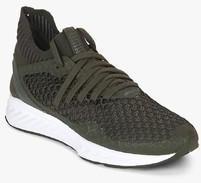 Puma Ignite Netfit Olive Running Shoes men