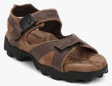 3ebcea681cbe Woodland Brown Sandals for Men online in India at Best price on 16th ...